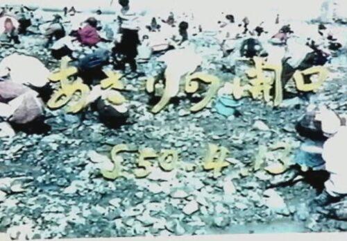 昭和50年4月13日 あさりの開口 宮城県南三陸町