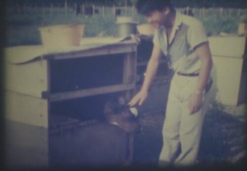 昭和55年 長野八ヶ岳中央農業実践大学校 長野県諏訪郡原村