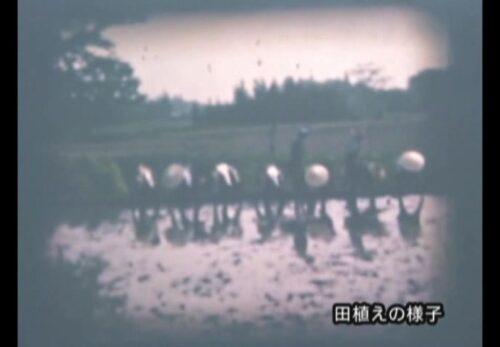 昭和30年代 宮城県栗原市鶯沢地区 田植えの様子