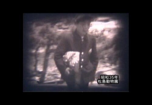 昭和35年 宮城県松島町 松島動物園