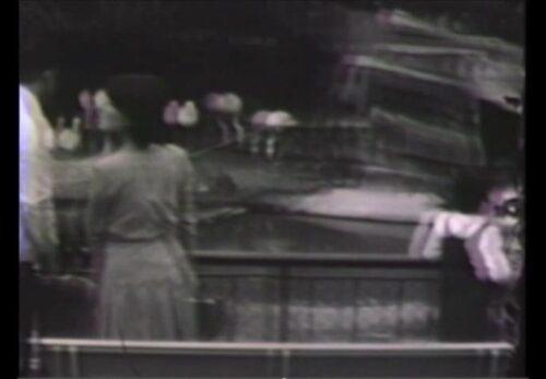 昭和46年10月 宮城県仙台市 八木山動物園