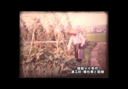 昭和40年代 福島県浪江町 畑仕事と田植え